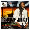 Couverture de l'album Concrete Jungle