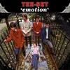 Couverture de l'album Emotion (The Rarities)