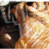 Couverture du titre Vibhuti