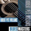 Couverture de l'album Blues Masters: Robert Pete Williams