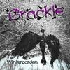 Couverture de l'album Wintergarden