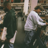 Cover of the track Endtroducing.....