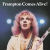 Cover of the album Frampton Comes Alive! (Live)