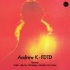 Cover of the album FDTD (Remixes) - EP