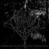 Couverture de l'album Sorrow Infinite and Darkness