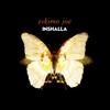 Cover of the album Inshalla