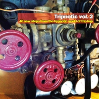 Cover of the track Tripnotic, Vol. 2 (40 New Steps from the Hypnotic World of Trip Hop)