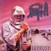 Cover of the album Leprosy (Reissue)