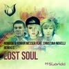 Cover of the album Lost Soul (Remixes) [feat. Christina Novelli]