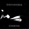 Couverture de l'album Bienvenidos