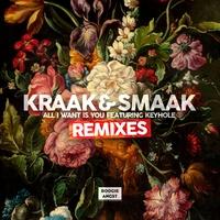 Couverture du titre All I Want Is You (Remixes) [feat. KEYHOLE] - EP
