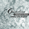 Cover of the album Chameleon: Dressed in White - EP
