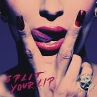 Cover of the track Split Your Lip