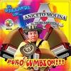 Couverture de l'album Puro Cumbion
