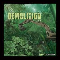 Couverture du titre Demolition 10, the Vinyl