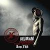 Cover of the album Delirium Provides the Safest Shelter