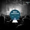 Cover of the album Ibiza Underground 2012