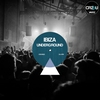 Couverture de l'album Ibiza Underground 2012