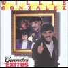 Couverture de l'album Willie Gonzalez: Grandes Exitos