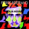 Cover of the album Caja Negra