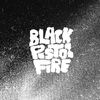 Couverture de l'album Black Pistol Fire