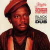 Couverture de l'album Black Foundation Dub