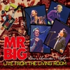 Couverture de l'album Live From the Living Room