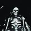 Couverture de l'album Forever Halloween