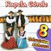 Cover of the album Góralska zabawa 4 (Highlanders Music from Poland)