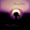 Couverture de l'album Echoes of Somnia