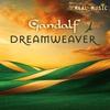 Couverture de l'album Dreamweaver