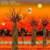 Couverture de l'album Red Dirt Red Heart