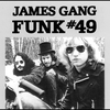 Cover of the track Funk #49
