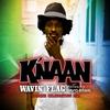 Couverture de l'album Wavin' Flag (Spanish Celebration Mix) [feat. David Bisbal] - Single