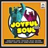 Cover of the album Joyful Soul Riddim