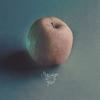 Couverture de l'album Strange Fruit