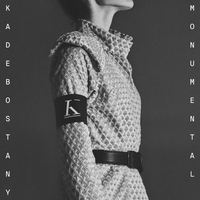 Cover of the track Monumental