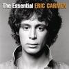 Couverture de l'album The Essential