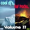 Cover of the album Cool DJ's, Hot Tracks, Vol. 11