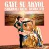 Cover of the album İstikrarlı Hayal Hakikattir
