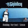 Cover of the album Making Perfect Sense
