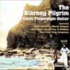 Couverture de l'album Blarney Pilgrim - Celtic Fingerstyle Guitar