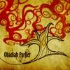 Couverture de l'album Obadiah Parker Live
