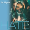Couverture de l'album Hate