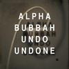Couverture de l'album Undo Undone