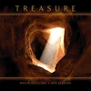 Couverture de l'album Treasure