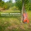 Cover of the track Donegal Wandering (feat. John Permenter)