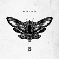 Cover of the track Young Gods