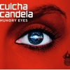 Cover of the track Hungry Eyes