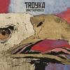 Couverture de l'album Ornithophobia